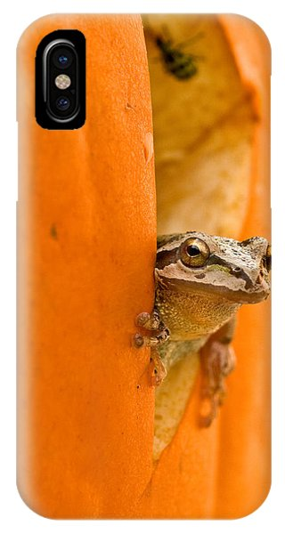 Halloween Surprise  IPhone Case