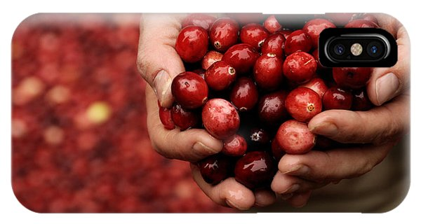 Handful Of Fresh Cranberries IPhone Case