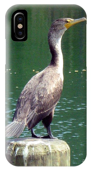 Hanging Out Lakeside IPhone Case