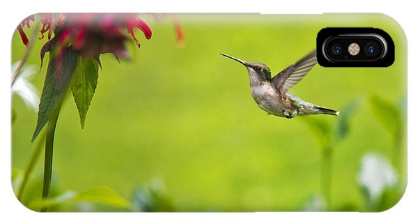 Beautiful Hummingbird iPhone Case - Happiness Hummingbird Garden by Christina Rollo
