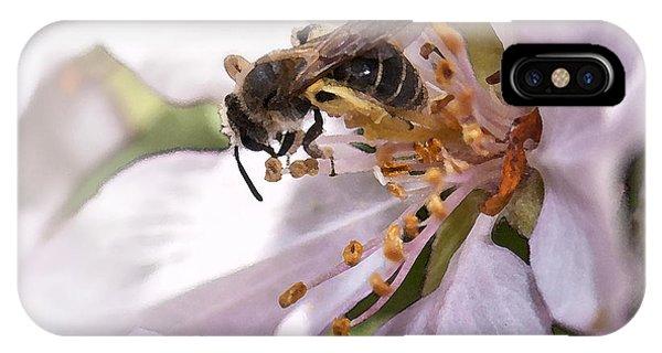 Honeybee iPhone X Case - Happiness Is by Betty LaRue
