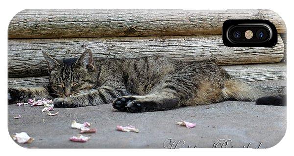 Happy Birthday Sleeping Cat IPhone Case