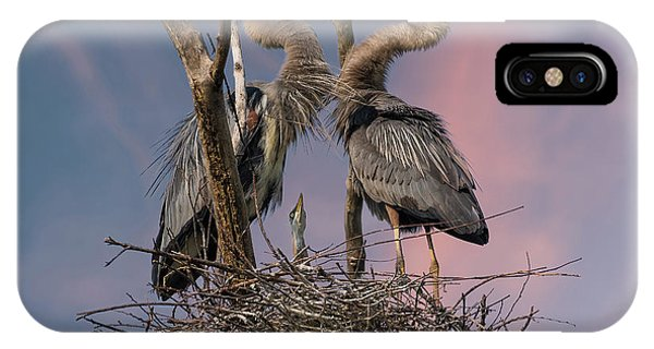 Heron iPhone Case - Happy Family Trio by Kevin Wang