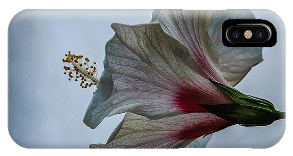 Happy Hibiscus At Biltmore Conservatory IPhone Case