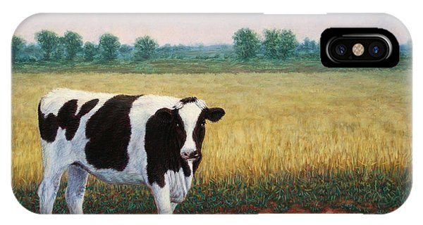 Cow iPhone X / XS Case - Happy Holstein by James W Johnson