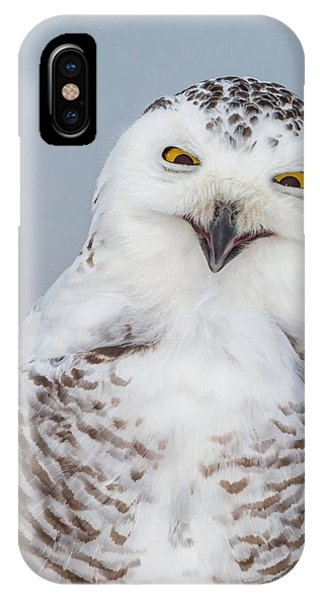 Happy Snowy Owl IPhone Case