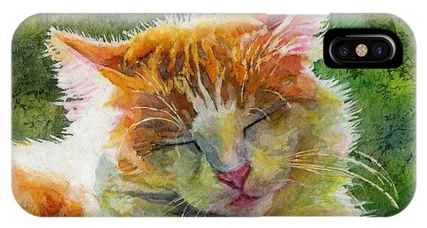 Tabby iPhone Case - Happy Sunbathing 2 by Hailey E Herrera