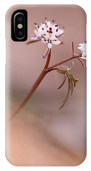 Harbinger Of Spring IPhone Case