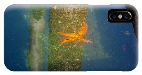 Harbor Star Fish IPhone Case