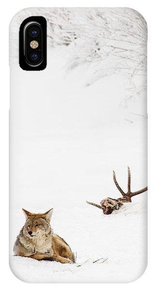 Hard Winter IPhone Case