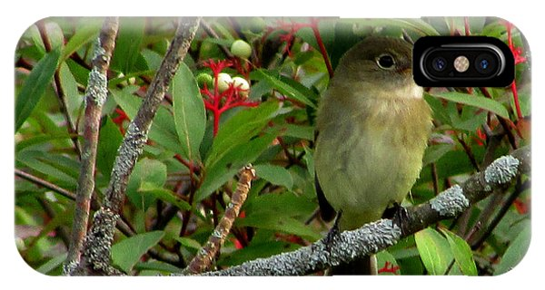 Hardly The Least Least Flycatcher IPhone Case