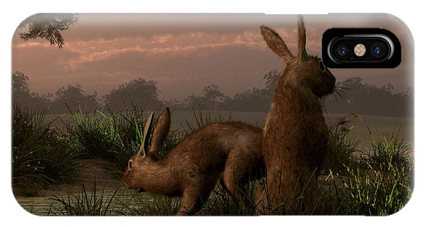 Hares In The Wetlands IPhone Case
