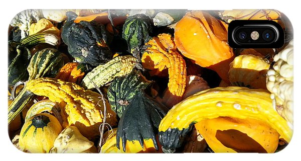 Harvest Squash IPhone Case