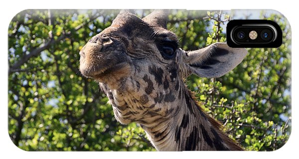 Haughty Giraffe IPhone Case