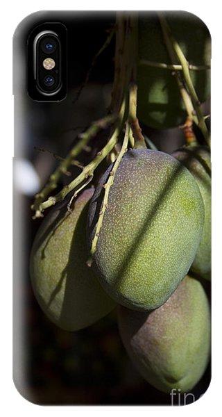 Hawaiian Mango Kihei Maui Hawaii IPhone Case