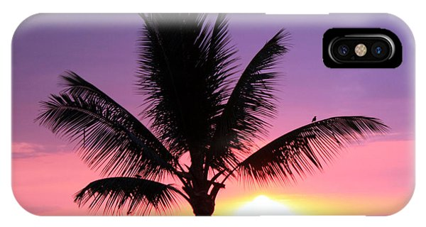 Hawaiian Sunset And Palm IPhone Case