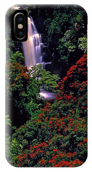 Hawaiian Waterfall With Tulip Trees IPhone Case