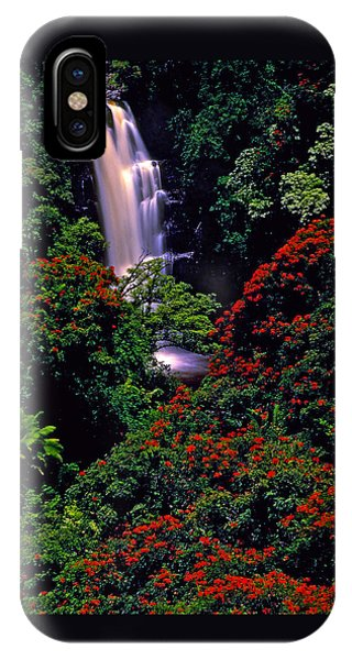 Hawaiian Waterfall With Tulip Trees IPhone Case