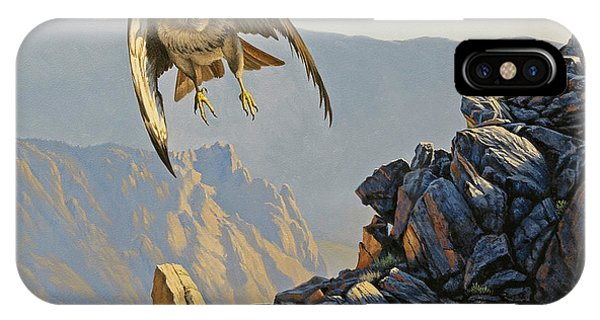 Hawk iPhone Case - Hawk Above Beartooth Pass by Paul Krapf