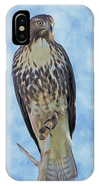 Hawk By Frank Lee Hawkins IPhone Case