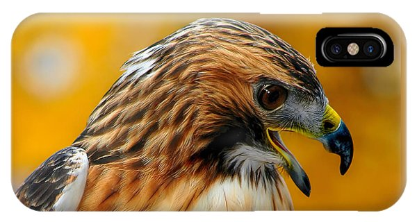 Hawk Hunt IPhone Case