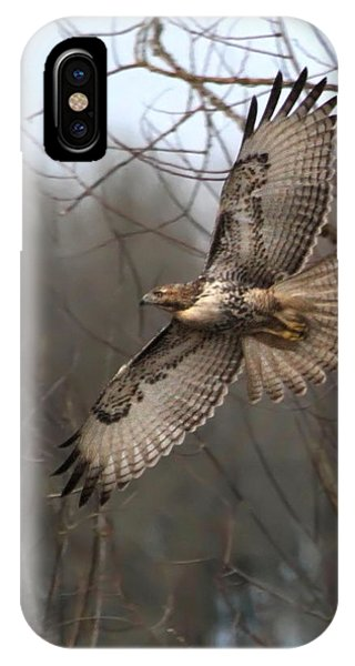 Red Tail Hawk iPhone Case - Hawk In Flight by Angie Vogel