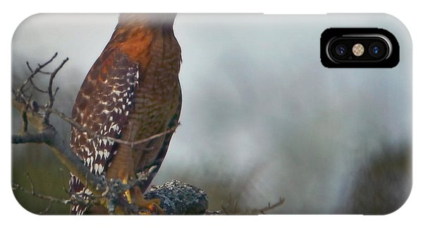 Hawk In The Mist IPhone Case