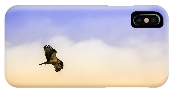 Osprey iPhone Case - Hawk Over Head by Marvin Spates