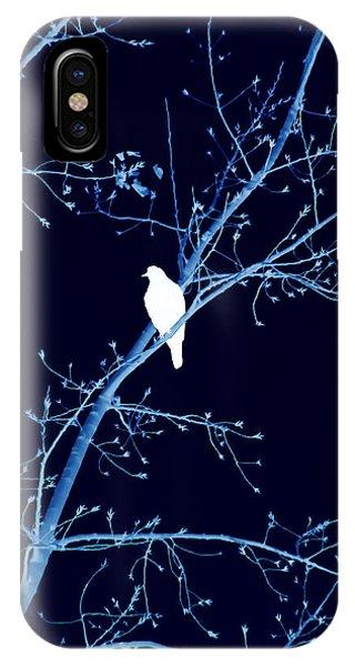 Hawk Silhouette On Blue IPhone Case