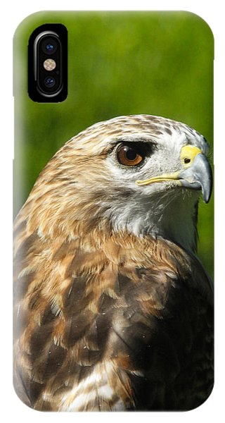 Hawkeye IPhone Case