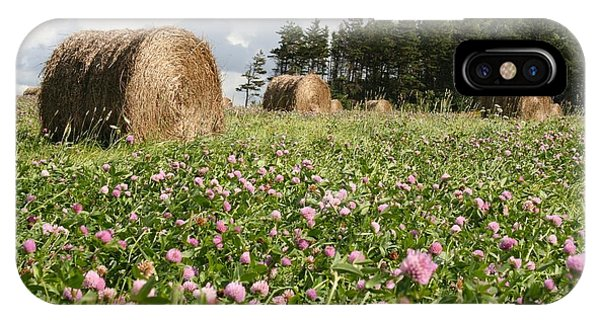 Hay Field IPhone Case