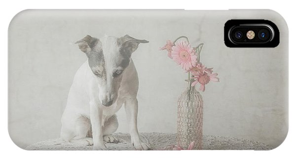 Prairie Dog iPhone Case - He Loves Me....he Loves Me Not.... by Heike Willers