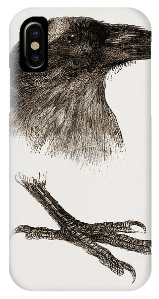 Raven iPhone Case - Head And Foot Of Raven by Litz Collection