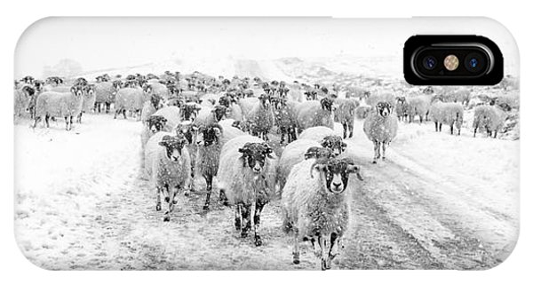 Sheep iPhone X / XS Case - Heading For Home by Janet Burdon