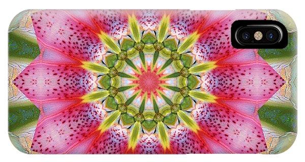 Healing Mandala 25 IPhone Case
