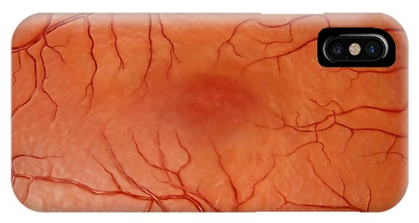 Flow Visualization iPhone Case - Healthy Retina by Anatomical Travelogue