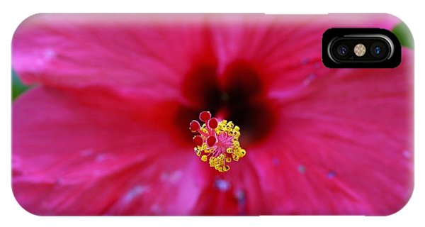 Heart Of Hibiscus Phone Case by Fred Alexandre