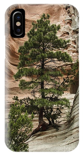 Heart Of The Canyon IPhone Case