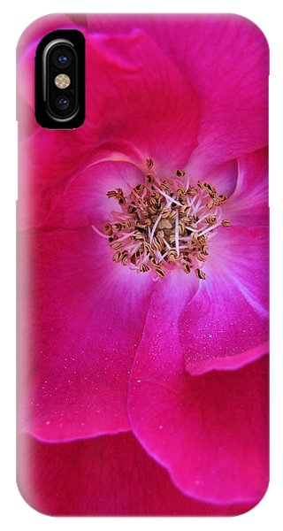 Heart Of The Rose 1 IPhone Case