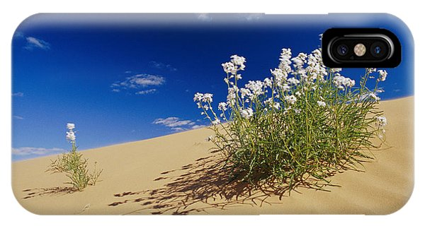 Hearty Wild Stock Wildflowers Growing Phone Case by Jason Edwards