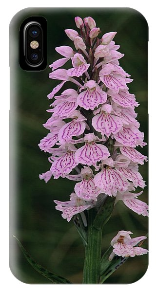 Heath Spotted Orchid Flowers Phone Case by Duncan Shaw/science Photo Library