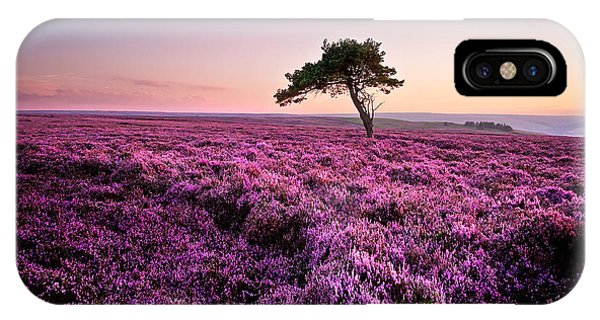 Tree iPhone Case - Heather At Sunset by Janet Burdon