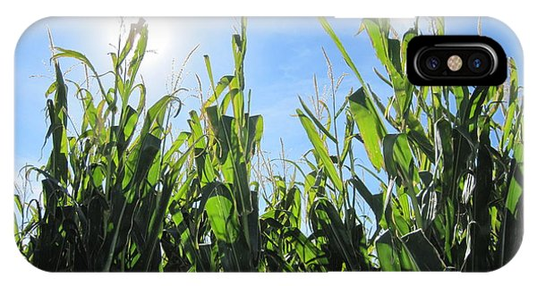 Heaven In Corn Phone Case by Amanda Powell