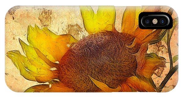Sunflower iPhone Case - Helianthus by John Edwards
