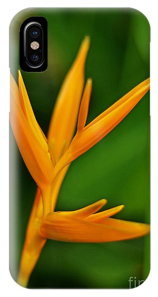 Heliconia Photo IPhone Case