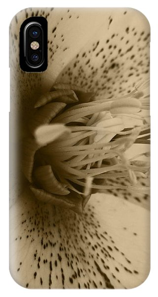 iPhone Case - Helle 1 by Kathy Spall