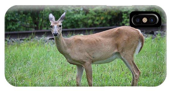 Hello Deer IPhone Case