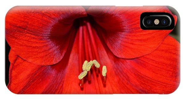 Hello Gorgerous  IPhone Case