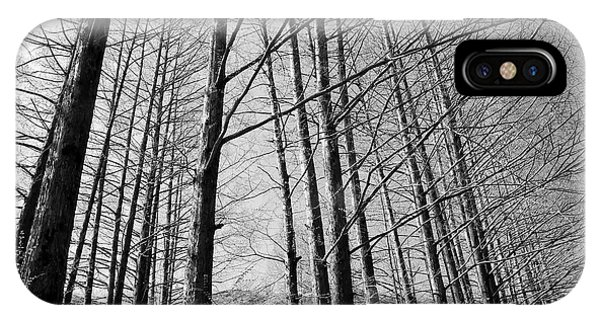 Hello Trees Phone Case by Phoresto Kim