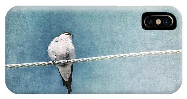 Blue iPhone Case - Herald Of Spring by Priska Wettstein